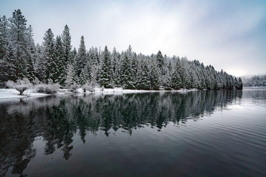 Sugar-Pine-Reservoir-2017-Karl-Zoltan-A7R3--1024x683.jpg